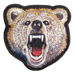 Grizzly bear patch